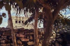 Mayan fördärvar i avståndet arkivbild