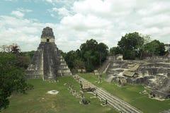 Mayan fördärvar i djungeln Tikal Royaltyfri Bild