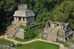 Mayan fördärvar i Palenque Arkivfoton