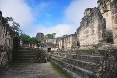 Mayan fördärvar på Tikal, Guatemala Royaltyfria Foton