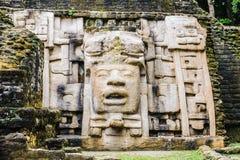 Mayan forntida symblols royaltyfri foto