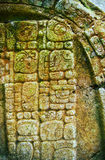 Mayan glyphs. Ancient Mayan hieroglyphics in stone, from the ruins at Caracol, Belize Stock Photos
