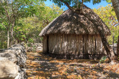 Mayan Hut Stock Image