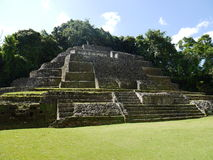 The mayan Jaguar Temple at the Lamanai in Belize Stock Photos