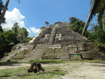 Mayan Lamanai fördärvar Royaltyfri Foto