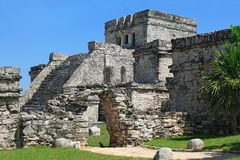 mayan mexico fördärvar tulum Arkivfoton