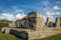 Mayan Palace - Ruins of Tulum, Mexico Stock Image