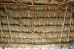Mayan palapa ceiling roof with palm tree. Mayan palapa ceiling roof detail with palm tree leaves Mexico Stock Photo