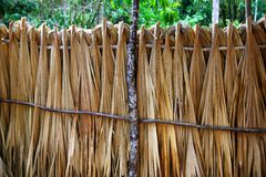 Mayan palm tree leaves wood fence in rainforest Royalty Free Stock Photography