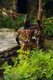 Mayan people in Mexico. XCARET, MEXICO - NOV 8, 2015: Unidentified man wears the leopard body paint of a Maya indian. The Mayan are a group of Indigenous people Royalty Free Stock Photo