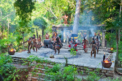 Mayan performance in the jungle of Mexico royalty free stock photo