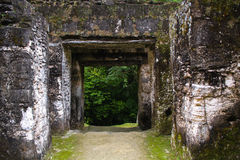 Mayan piramide gate in Tikal Guatemala Royalty Free Stock Images
