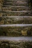 Mayan piramide staircase Tikal Guatemala. Mayan piramide staircase Tikal, Guatemala Stock Photo