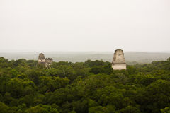 Mayan piramides in jungle or selva in Tikal Peten Guatemala Stock Photo