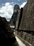 Mayan piramides in Tikal Stock Foto's
