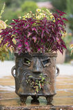 Mayan planter with face made of clay or stone. Mayan planter with face of clay or stone Royalty Free Stock Photos