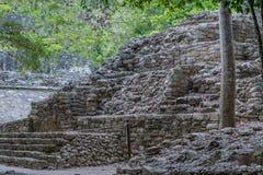 Mayan pyramid av det arkeologiska området av Coba royaltyfri fotografi