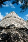 Mayan pyramid, Coba, Mexico Arkivbilder
