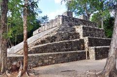 Mayan pyramid, Coba, Mexico Royaltyfri Fotografi