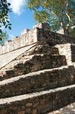 Mayan pyramid, Coba, Mexico Royalty Free Stock Image