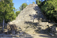 Mayan pyramid i Coba Arkivfoto