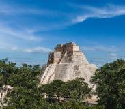 Mayan pyramid (pyramiden av trollkarlen, Adivino) i Uxmal, Mexic Royaltyfri Fotografi