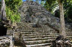 Mayan pyramid stock photos