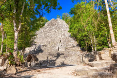 Mayan pyramid surrounded by jungle in Mexico Royalty Free Stock Photography