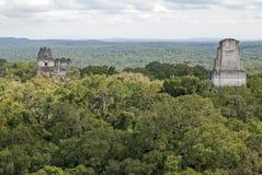 Mayan pyramids above the jungle canopy Stock Photos