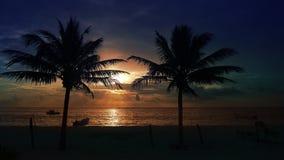 Mayan Riviera palm trees beach sunrise Caribbean. Mayan Riviera palm trees beach sunrise in Caribbean sea of Mexico stock footage