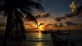 Mayan Riviera palm trees beach sunrise Caribbean. Mayan Riviera palm trees beach sunrise in Caribbean sea of Mexico stock video