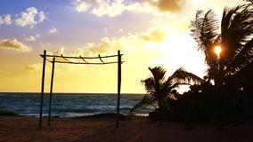 Mayan Riviera palm trees beach sunrise Caribbean. Mayan Riviera palm trees beach sunrise in Caribbean sea of Mexico stock video footage
