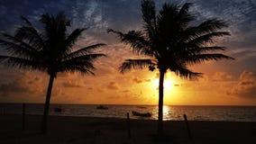 Mayan Riviera palm trees beach sunrise Caribbean. Mayan Riviera palm trees beach sunrise in Caribbean sea of Mexico Quintana Roo stock video footage