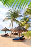 Mayan Riviera schuifdak de Caraïben van strandpalmen Royalty-vrije Stock Afbeeldingen