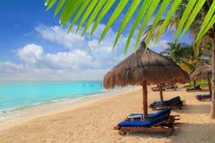 Mayan Riviera schuifdak de Caraïben van strandpalmen Royalty-vrije Stock Fotografie