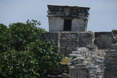 Mayan Ruïnes Stock Foto's