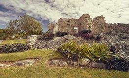 Mayan ruïnes in aard worden ondergedompeld die stock afbeelding