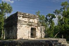 Mayan ruïnes bij San Gervasio Stock Afbeeldingen