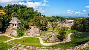 Mayan ruïnes in Palenque, Chiapas, Mexico Royalty-vrije Stock Fotografie