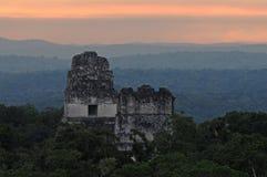 Mayan ruïnes in Tikal Royalty-vrije Stock Afbeeldingen