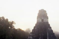 Mayan ruïnes Tikal, Guatemala royalty-vrije stock fotografie