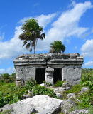 Mayan ruin in the Caribbeans Mexico Stock Photos