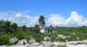 Mayan ruin in the Caribbeans Mexico Royalty Free Stock Photography