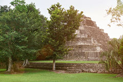Mayan ruin pyramid Stock Photos