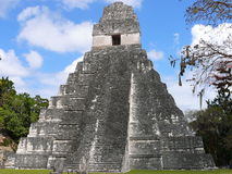 Mayan Ruin at Tikal Royalty Free Stock Photo