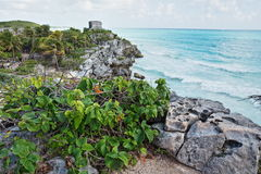 Mayan ruin of Tulum, Mexico Stock Photography