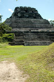 Mayan ruins in Belize Royalty Free Stock Images