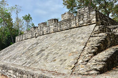 Mayan ruins - Coba Royalty Free Stock Photography
