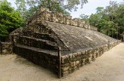 Mayan ruins at coba,cancun,mexico Royalty Free Stock Photo