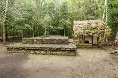 Mayan ruins at coba,cancun,mexico stock photos